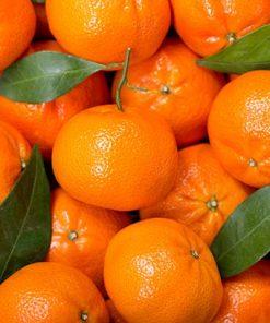 clementine di sicilia acquisto online