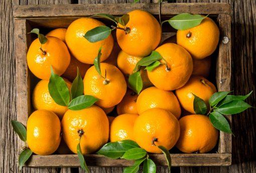 acquisto mandarini di sicilia online
