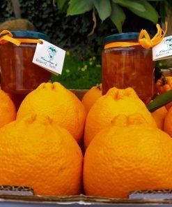 arance rosse e marmellata di agrumi di sicilia